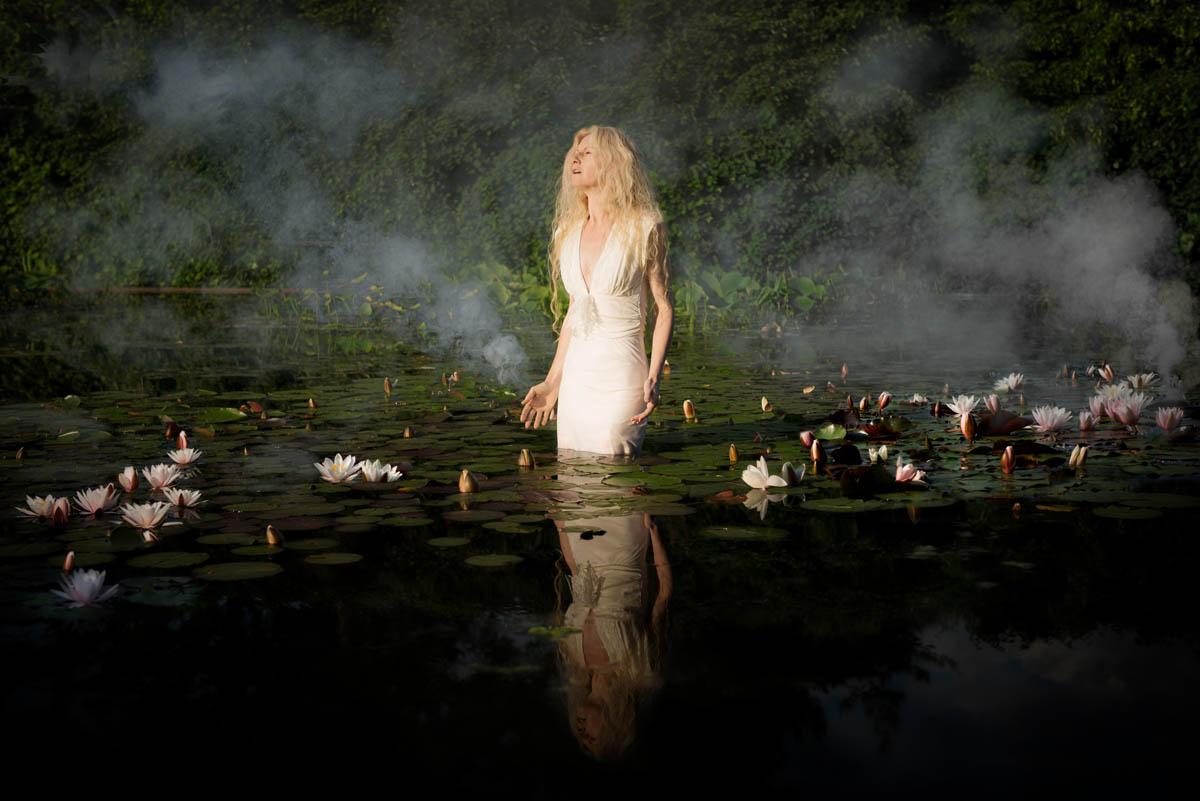 20120526_roses_in_fog